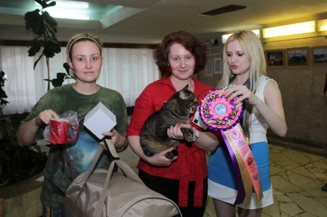 Best of Best in the show GEC Афанасий Жемчужина Поволжья, KBS n 23, владелец-Нецик З.
